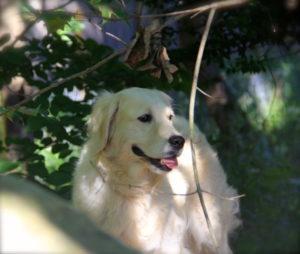 Devon loves the outdoors